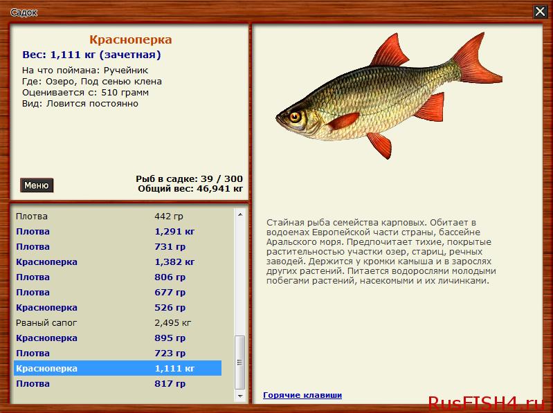 где ловят рыбу иркутск